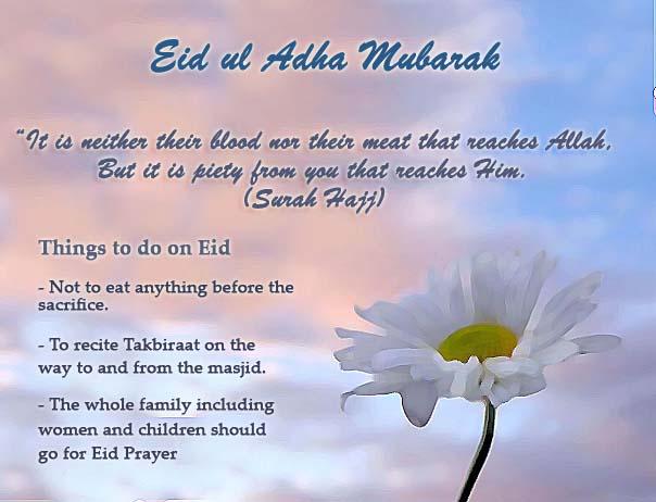 Eid ul adha mubarak glimpses eid ul adha card m4hsunfo Choice Image